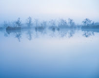 Dimma i vattnet royaltyfria foton