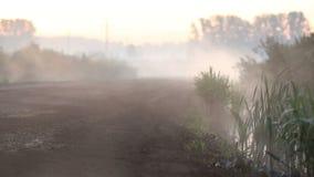 Dimma kryper ut på vägen stock video