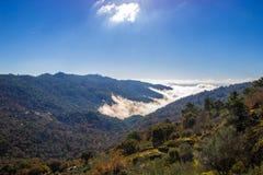 Dimma mellan bergen royaltyfria bilder