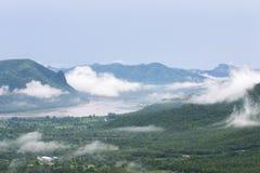 Dimma och berg på Phu Thok, Loei Arkivfoto
