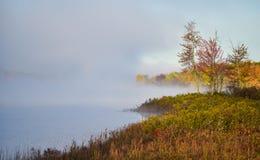 Dimma och mist stiger lite varstans ett skogsbevuxet våtmarkträsk, svepningen med dimma, ett färgrikt, strand, lövskog Arkivfoto