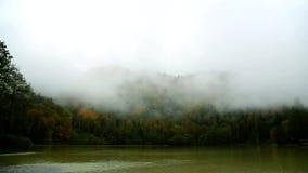 Dimma och moln ?ver sj?n och berg Flyg ?ver sj?n i skog arkivfilmer