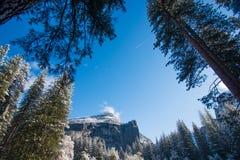 Dimma och snö på träd och klippor av den Yosemite nationalparken, Kalifornien i vinter under soluppgång Arkivfoton