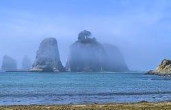 Dimma omger seastacks med träd på Stillahavskusten av staten Washington Royaltyfri Bild