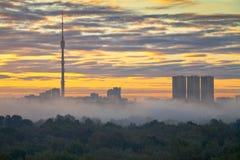 Dimma på höststadssoluppgången Arkivfoton
