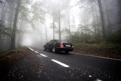 Dimma på vägen Royaltyfri Fotografi