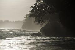Dimma rullar in i den Manzanillo nationalparken Royaltyfri Foto