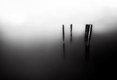 Dimma sjö (svart & vit) Royaltyfria Bilder