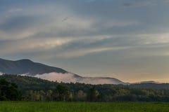 Dimma som bildar i bergen Arkivfoto
