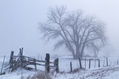 Dimma som rullar över en landslantgård Royaltyfri Foto