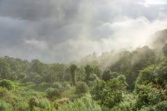 Dimma som täcker kullarna av nagarkot Arkivbild