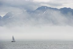 dimmasegelbåt Royaltyfri Foto