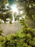 Dimmig bergmorgon Arkivfoton