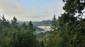 Dimmig bergmorgon Royaltyfri Bild