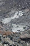 Dimmig dag i bergen nära Franz Josef Glacier royaltyfri bild