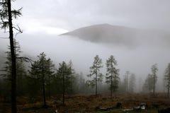 Dimmig dag i de österrikiska fjällängarna Arkivbild