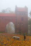 Dimmig dag på det Kwidzyn slottet Royaltyfri Fotografi