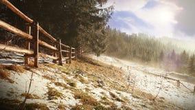 Dimmig fjädermorgon Mist flödar mellan granar Tatra berg arkivfilmer