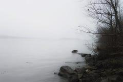 Dimmig flod Arkivfoto