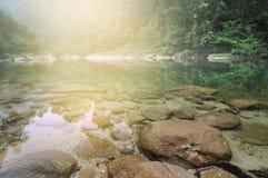 Dimmig Forest Pebble Stones Sandy Rocky för klart vatten flod Arkivfoton