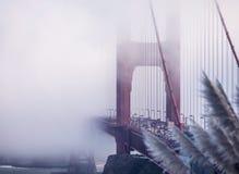 Dimmig Golden Gatetrafik Arkivfoton