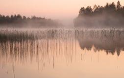 Dimmig gryning på en sjö Arkivfoton