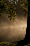 Dimmig Lake i höst Arkivfoto