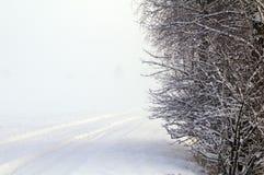 dimmig landskapvinter Fotografering för Bildbyråer