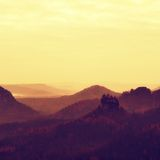 Dimmig melankolisk morgon Sikt över björkträd till den djupa dalen mycket av det tunga misthöstlandskapet inom gryning Royaltyfria Bilder