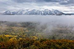 Dimmig mist i Rocky Mountains av Colorado Royaltyfri Bild