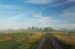 Dimmig morgonäng Sommarliggande med den gröna gräs, vägen och oklarheter royaltyfri foto