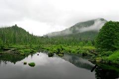 dimmig morgon Fotografering för Bildbyråer