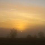 dimmig morgon Royaltyfria Foton