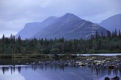 dimmig morgon för lake Royaltyfria Bilder