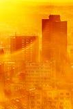 Dimmig morgon för stadsdjungel Arkivbild
