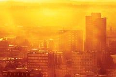 Dimmig morgon 2 för stadsdjungel Royaltyfri Bild