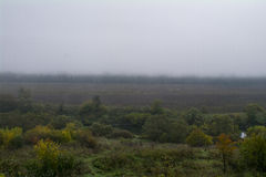 Dimmig morgon, floden Oka Royaltyfri Foto