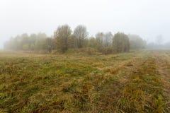 Dimmig morgon höst, fält, by Arkivfoto