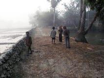 Dimmig morgon i den Bengal bygden i den Sundarban djungeln, västra Bengal, Indien Royaltyfri Fotografi