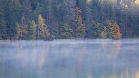 Dimmig morgon på bergsjön stock video