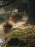Dimmig morgon på en flodbank Arkivbild