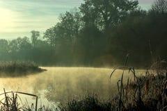 Dimmig morgon på floden på gryning Royaltyfri Fotografi