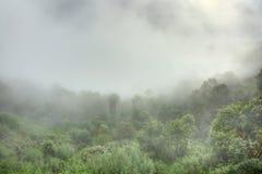 Dimmig morgon på Nagarkot Arkivfoton