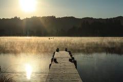 Dimmig morgon sjö 8 arkivbild