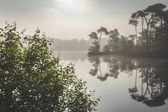 Dimmig morgondimma över sjön Solljus som kommer till och med dimman Zonsopkomst över meer i Oisterwijkse Bossen en Vennen royaltyfri fotografi