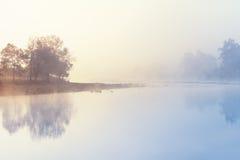 dimmig morgonflod royaltyfri foto