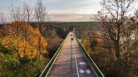 dimmig morgonflod för bro Royaltyfria Foton