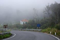 Dimmig och dimmig bergväg royaltyfri bild
