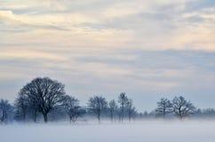 Dimmig och frostig dag Fotografering för Bildbyråer