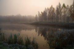 Dimmig Oktober gryning på ett lantligt damm Petrovsky Pushkin berg Ryssland Royaltyfri Fotografi